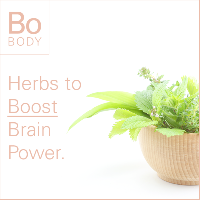 Herbs to Boost Brain Power.