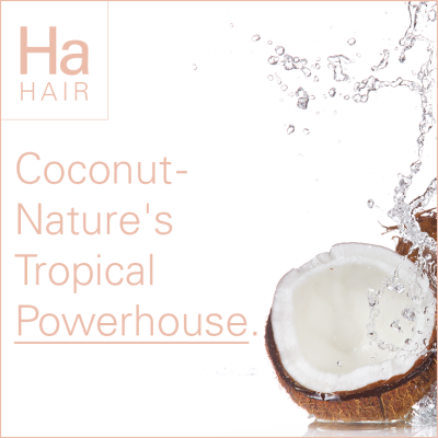 Coconut – Nature's Tropical Powerhouse.